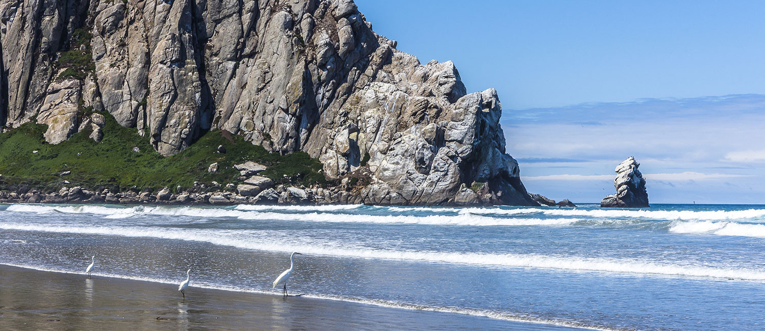 BOUNDLESS MORRO BAY ATTRACTIONS ARE CONVENIENTLY NEAR LA SERENA INN